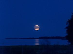 Swedish_moon_(205085331)